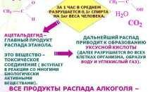 Продукты распада алкоголя в организме